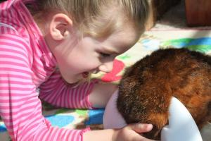 Toy teaches autistic children positive play