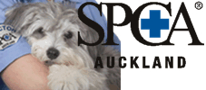 RNZSPCA To Seek Tongan Community Leaders' Support Over Dog Slaughter