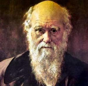 Darwin Show Premieres