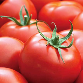 Tomatoes and potatoes lead food price fall in May