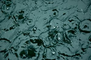 Rain to move across upper North Island Saturday