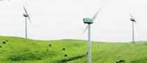 Smith: Public To Have Say Over Turitea Wind Farm Proposal