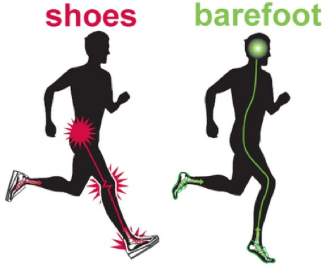 c803ecbbaa2 http://www.voxy.co.nz/lifestyle/why-barefoot-runners-have-edge-shoe-wearing-rivals/1783/48973